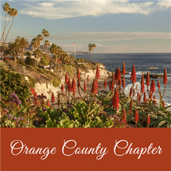Orange County Virtual Meeting: Adverse Effects of COVID-19